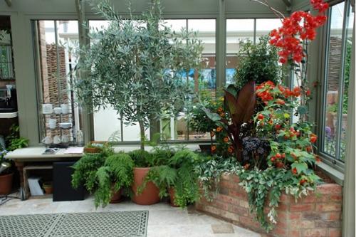 Зимние сады в квартире фото